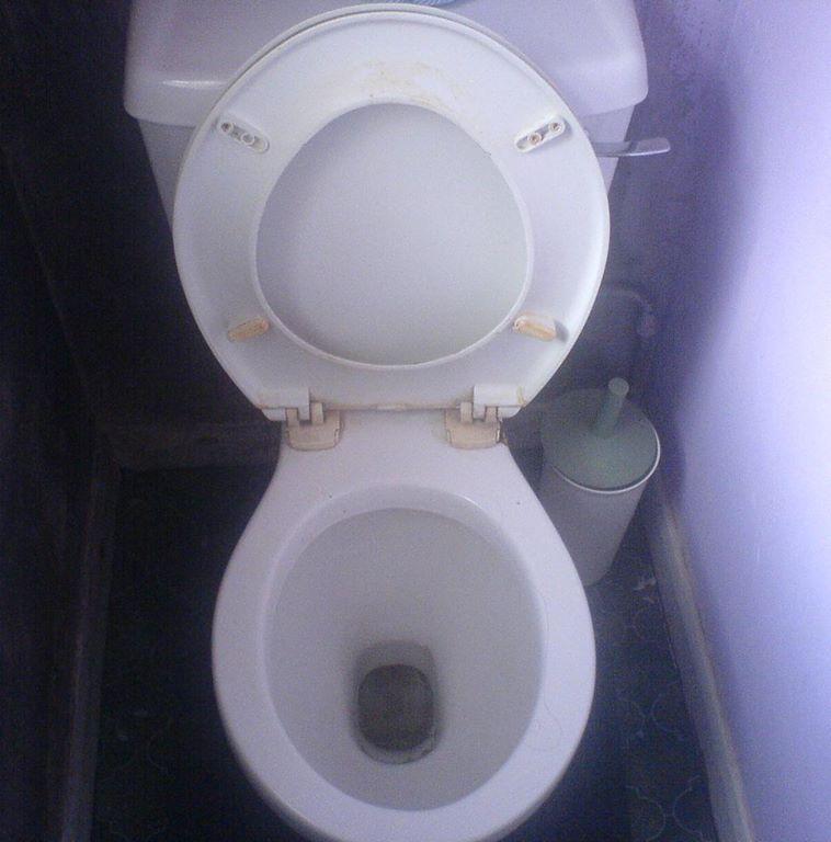 20-toalett