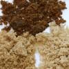 FODMAP – Riktige matvarer til den irriterte tykktarmen