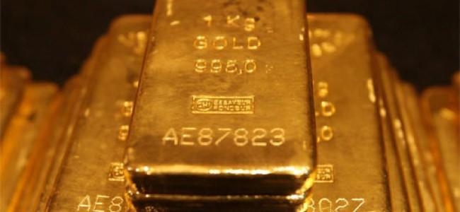 Gull – Nyttig informasjon