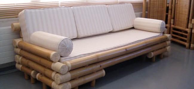 Bambus – et fantastisk materiale – fakta og bruksområder