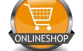 MultiStore WooCommerce or multistore theme?