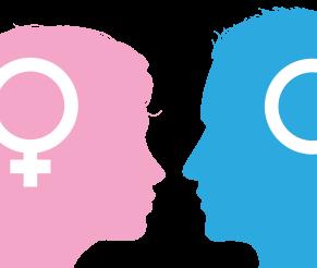 Gamblingforskjellene mellom menn og kvinner
