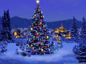 bilde-foto-juletre