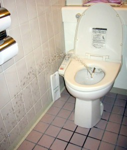 dusj-toalett