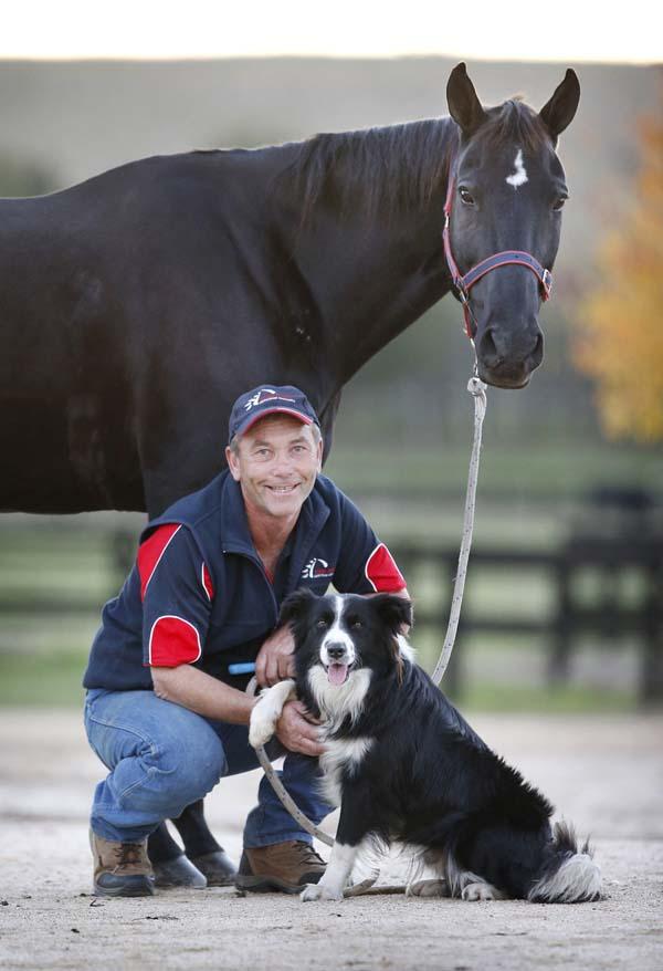 hest-hund-6