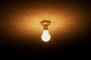 lyspare-energiforbruk-stromforbruk