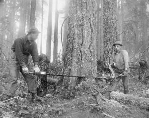 Tømmermenn i full jobb